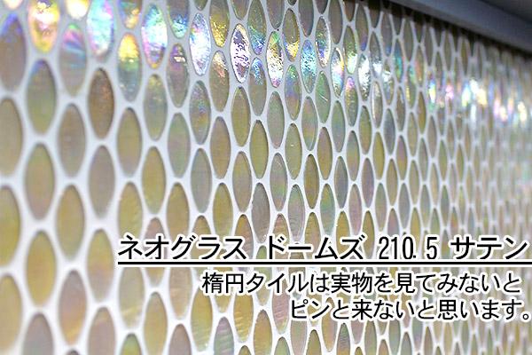 ネオグラス ドームスサテン(楕円)