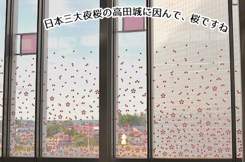 ガラス窓に桜のはなびら